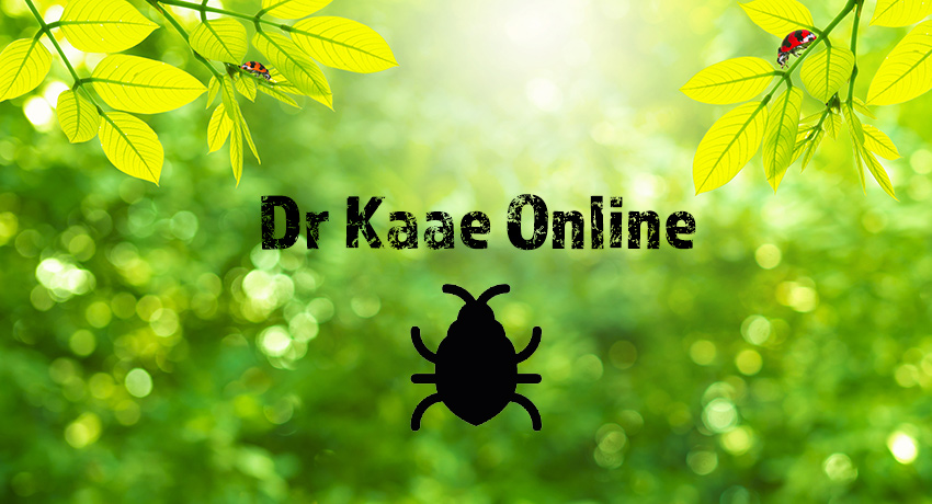 Dr Kaae Online Pest Education and Certification